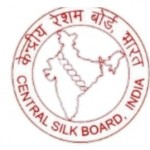 cmerti central silk board