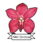 nrc orchid molbiogen