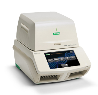 Biorad realtime PCR