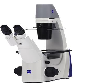 Primovert Microscope